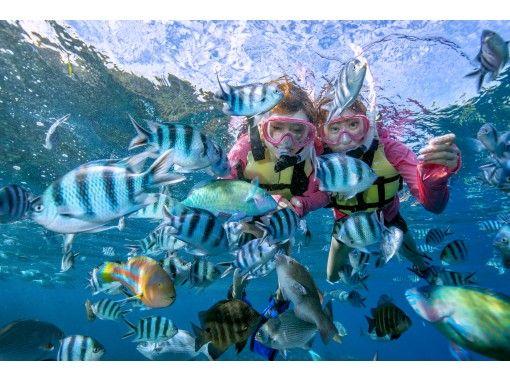 サマーリゾート沖縄/Summer Resort Okinawa のギャラリー