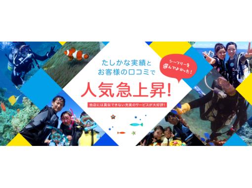 沖縄ダイビングショップ シーフリー(Sea Free) のギャラリー
