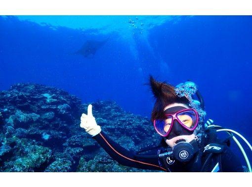 八重山 Diving Service Field のギャラリー