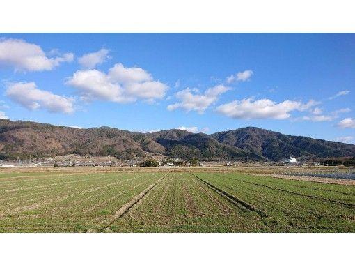one-more-kyoto もうひとつの京都、もう一度京都 のギャラリー