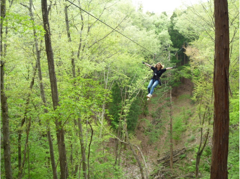 """""""Nature symbiosis type outdoor park"""" Forest adventure """""""""""