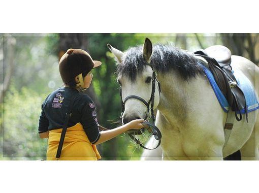 ライディングクラブウインズ(HORSE RIDING CLUB WINDS) のギャラリー