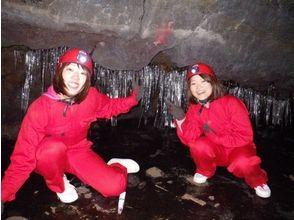 世界的にも珍しい樹海&岩洞窟を探検!画像の説明画像3