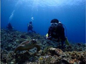 [Okinawa Miyakojima] enjoy the superb view point! Fan diving (beach dive)