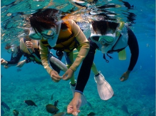 【沖縄・青の洞窟】五つ星レビュー多数★熱帯魚満喫シュノーケル★写真・動画その場でスマホにプレゼント♪