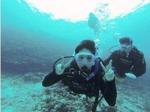 【沖縄県・国頭郡】瀬底島周辺体験ダイビング【ボートエントリー】の画像