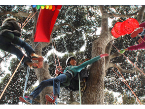 Recommended for [Shizuoka Minamiizu] spring and autumn! Tree climbing experience! Image of