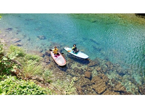[Tokushima / Mugi] Recommended for beginners and families! SUP (Stand Up Paddle) Experienceの紹介画像