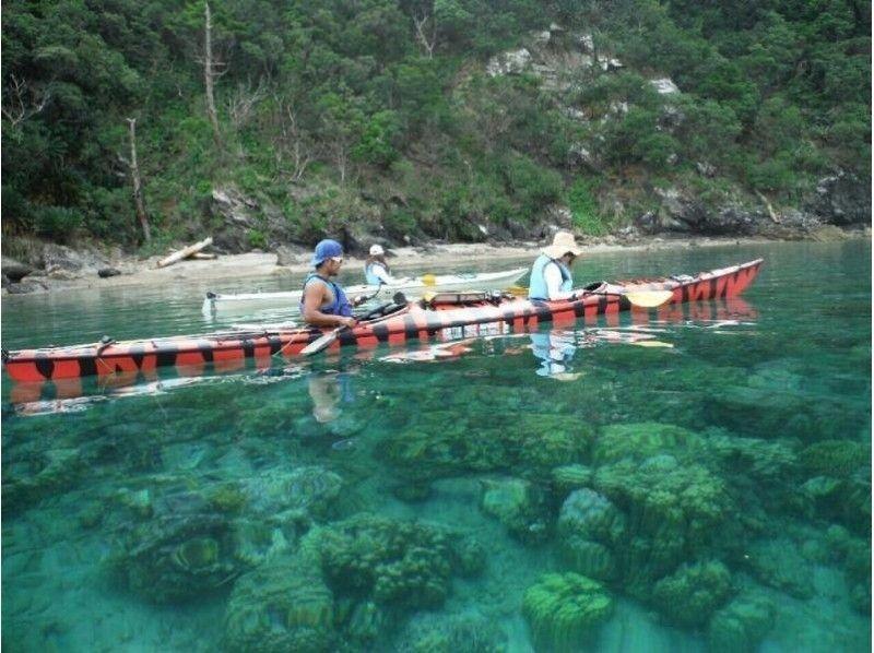 ★ Chartable ★ 【Kagoshima · Amami Oshima】 Heartwarming canoe 1day tour introduction image