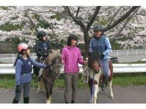 [神奈川縣相模原/ Sagamiko]它伸出手來一匹馬!騎術學校的孩子的照片(小學)
