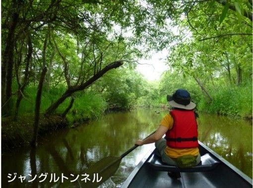 【 Hokkaido · Kushiro】 The most popular! Canoe Kushiro Marsh course full courseの紹介画像