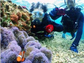 【沖縄・恩納村】約50分楽しめる幻想的な海の世界!「青の洞窟」で体験ダイビング