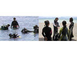 【埼玉・さいたま】体験ダイビング!海講習(1日コース)の画像