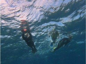 【沖縄・宮古島】ダイビング講習 Cカード取得コース