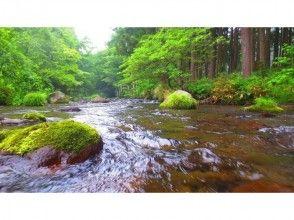 【青森・奥入瀬渓流】釣りの入門編!奥入瀬エリアで川釣り体験☆2時間プラン