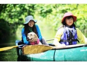 【北海道・美々川】緑が生い茂る千歳美々川!カヌーでジャングルツーリング
