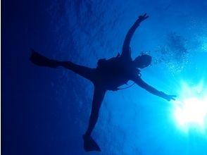 【沖縄・与那国】楽しみながら学ぼう♪ダイビングライセンス取得コース(3日)の画像