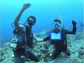 【沖縄・石垣島】石垣島の海でダイビングライセンス講習コース(3日間)の画像