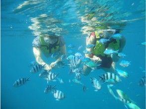 [冲绳/ Sesoko岛]美丽海水族馆附近!香蕉船可以乘车前往塞索科岛浮潜之旅的偏远岛屿