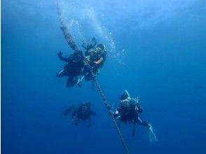 [Yugawara, Manazuru, Odawara] of refresh diving course image