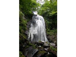 【福島・裏磐梯】小野川湖に注ぐ渓谷沿いをトレッキング!小野川不動滝探勝路の画像
