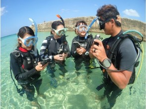 [Okinawa Ishigaki Island] diver in the stone wall of the sea, which boasts the world debut! PADI diving license course