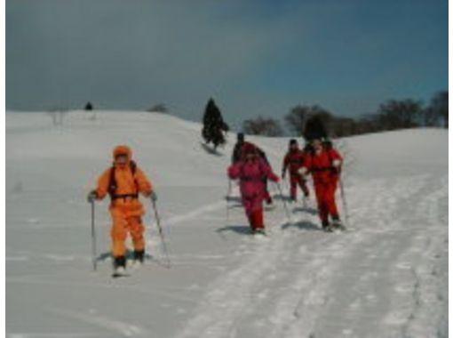 【新潟・妙高高原】スノーシュー半日体験コース。初心者で体験してみたい!という方におすすめ