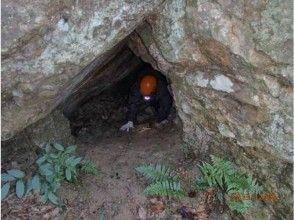 【徳島・津乃峰山】岩窟めぐりハイキング!ミニケイビング体験(1日コース)の画像