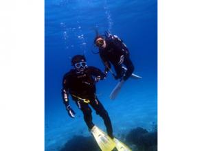 【高知県 柏島】ライセンスが無くても大丈夫!体験ダイビングで美しい海を散策
