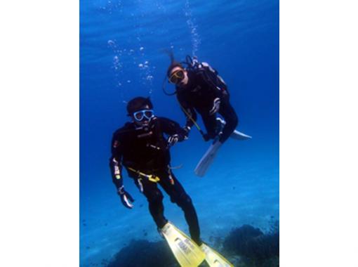 【高知県 柏島】ライセンス無くてもOK!体験ダイビングで美しい海を散策