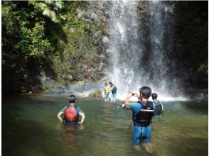 【沖縄・名護エリア】やんばるの川で気分爽快!沢登りアドベンチャーツアーの画像