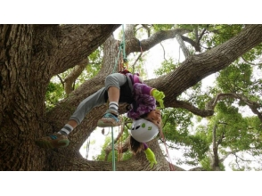 ☆ Kids Tree Climbing ☆ Family with Forest Enkyu ~