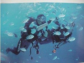 【沖縄・西表島】極上の一日!ピナイサーラの滝へカヌー&トレッキング&体験ダイビング!の画像