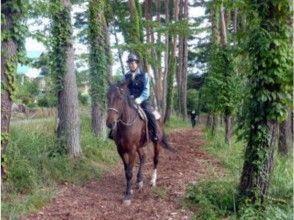 【山梨・小淵沢】野外騎乗!初めての乗馬プラン・体験プランの画像