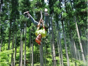 【Gifu · Gero city】 Forest ninja! Image of a thrill field athletic experience