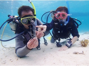 【沖縄・石垣島】今年こそ取得しよう!ダイビングライセンス講習コースの画像