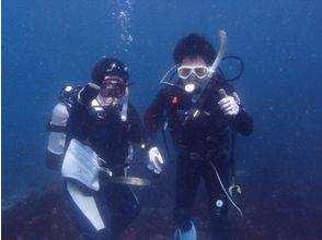 【静岡・伊豆】ライセンス取得!初心者のための充実したダイビング講習!の画像