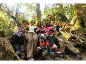 【鹿児島県・屋久島】旅の仲間と行く!縄文杉(1日)の画像