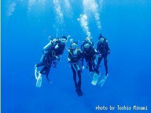 [小笠原,集集]小笠原輪出發日上午出發地和目的地日期下午發車,體驗潛水旅遊