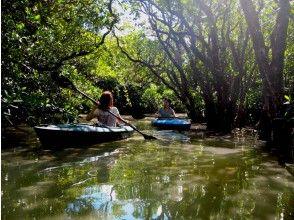 [Kagoshima-Amami Oshima] snorkeling and mangrove canoe (1 day tour)