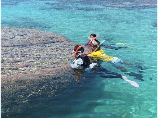 【沖縄・石垣島】ボートで行く、白保の青サンゴシュノーケリングツアー!の紹介画像