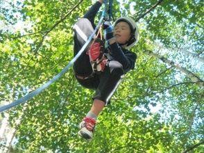 【長野・北アルプス】お子様も高い木に登れる!小谷村の森でツリークライミングの画像