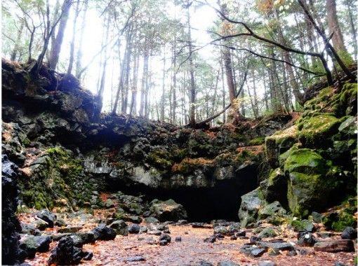 """Aokigahara Jukai和富士山火山洞冒險""""充滿活力的神秘森林和地下世界""""※私人旅遊の紹介画像"""
