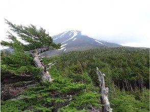 御中道・大沢崩れトレッキング『富士山信仰の古道と最大の崩落地を望む』の画像