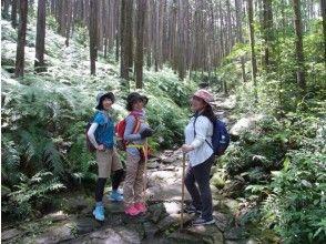 【三重・熊野】熊野古道伊勢路・馬越峠エコツアーの画像