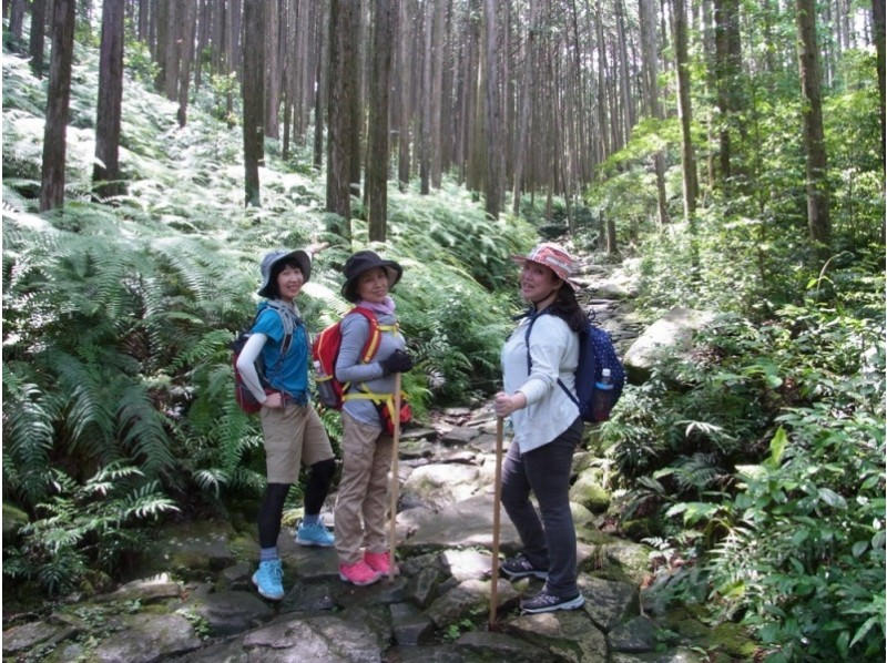 [Mie/ Kumano] Let's take a leisurely walk with the guide of Kumano Kodo Iseji 'Magoe Pass Eco Tour' guide!
