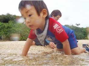 [Okinawa Onna] popular with young children! OK snorkeling Iso observation course may not swim