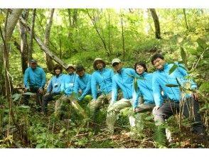 """[青森白神山]与五种感官""""山毛榉森林步道""""一起体验专业的神秘之旅!"""