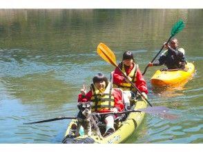 [Saitama Chichibu] Beginners welcome! Easy kayak experience