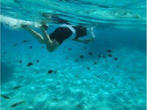 [與論]孩子也安全!色彩斑斕的熱帶魚遊和浮潛計劃(Yurikehama旅遊也可以!)